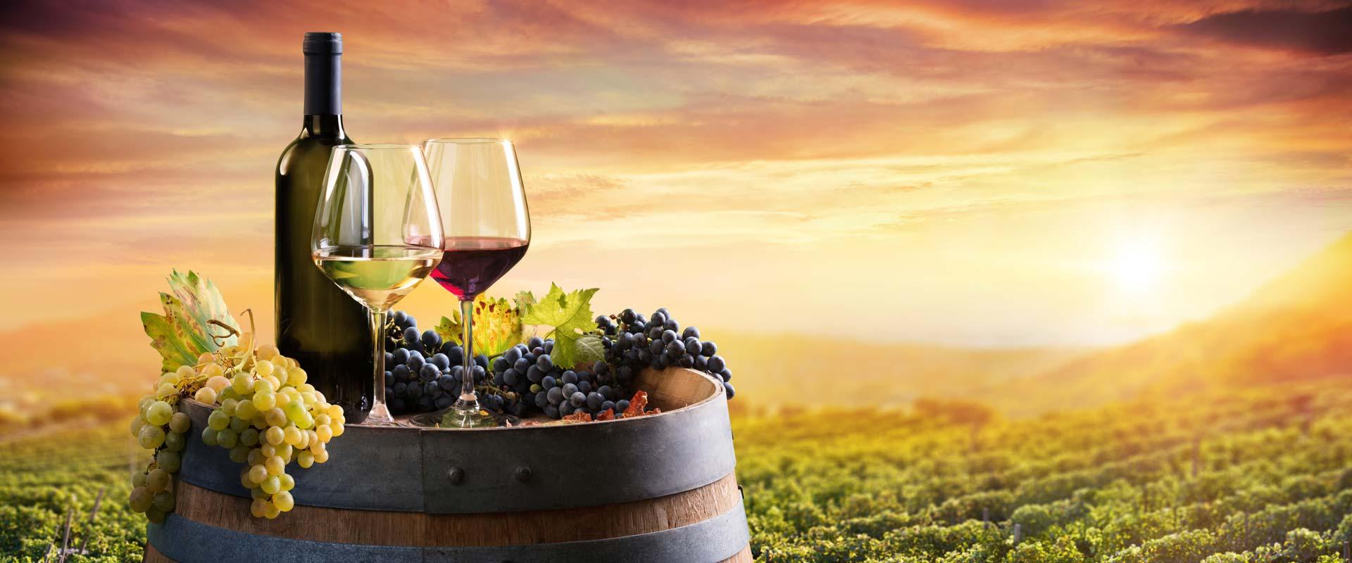 Niagara Falls Wine Tours